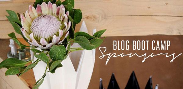 Blog Boot Camp Sponsors