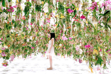 Floating Flower Garden - teamLab