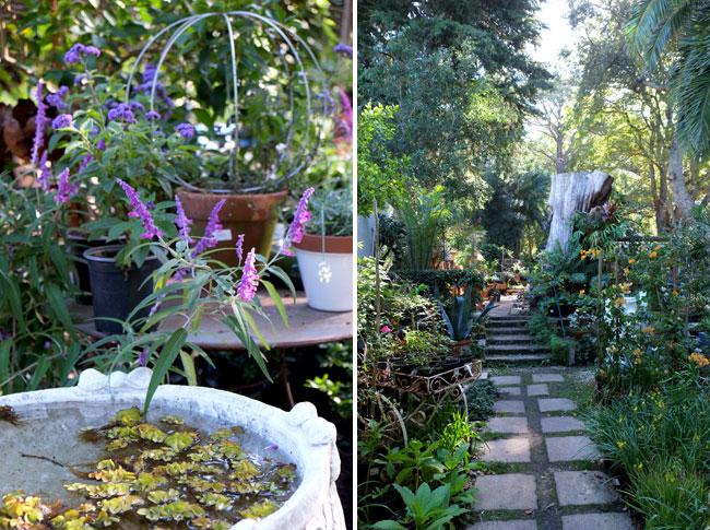 Greenhouse Nursery