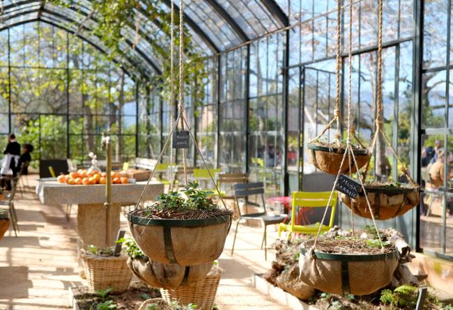 Babylonstoren Greenhouse