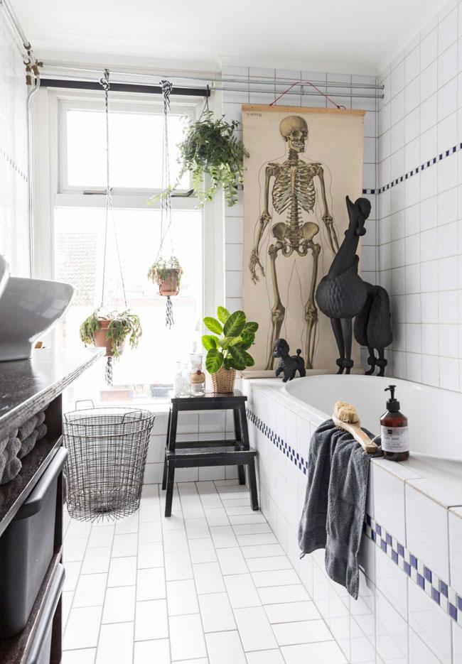 Colourful Dutch home