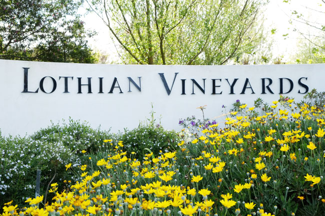 Lothian Vineyards, Elgin